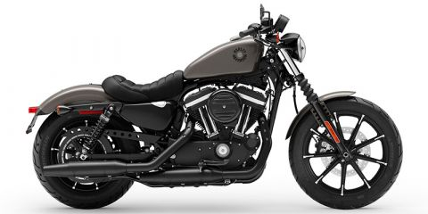 New 2019 Harley-Davidson Iron 883